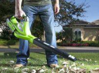 choosing a leaf blower