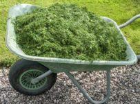 garden-composting