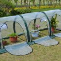 hydroponic-grow-tent