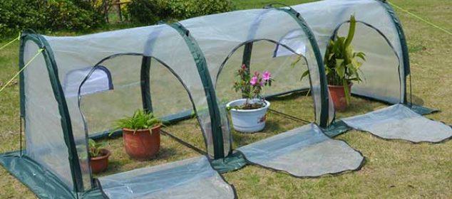 hydroponic-grow-tent