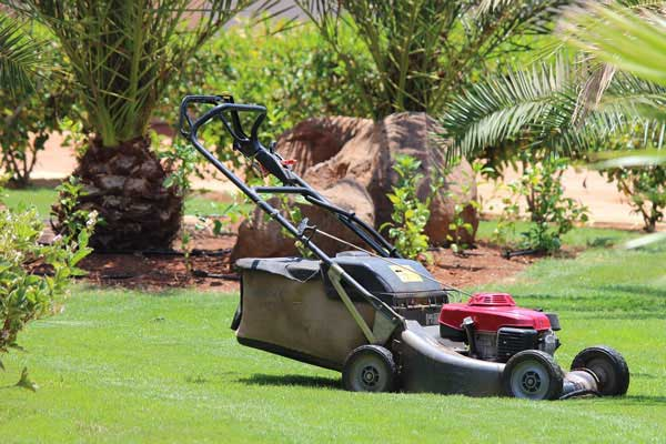 lawn care business tips