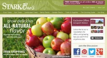 Top 10 Sites to Buy Fruit Trees Online