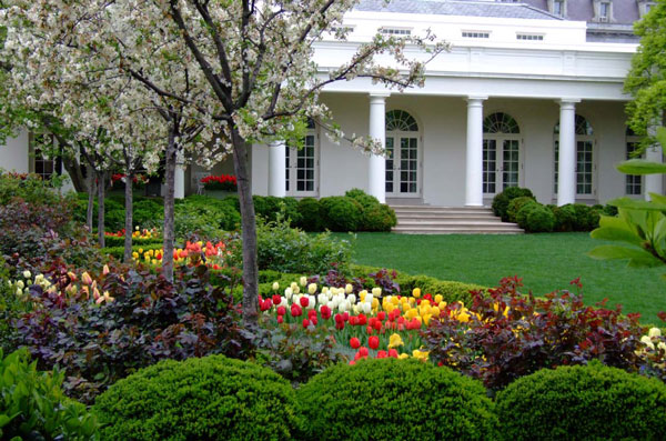 Interesting Facts and Figures about Home Gardening in the US | Home on home business tips, home projects, home security tips, photography tips, home decor tips, landscaping tips, home recycling tips, home remodeling tips, real estate tips, container gardening, home design tips, home fitness, parenting tips, gardening guides, home garden tips, home diy tips, home cleaning tips, home exercise tips, flower gardening, herb gardening, home safety tips, vertical gardening, organic gardening, home beauty tips, home sports, home theater tips,